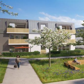 Immobilier Neuf 2